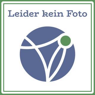 Duftlampe Ligno zart türkis