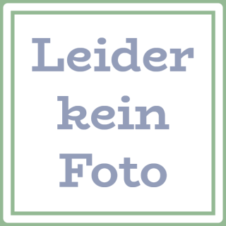 BIO Blütenhonig mit Goldrute