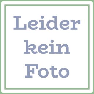 Apfel-Honigmüsli